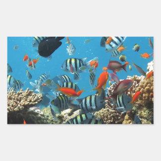 Pescados Naturescape del arrecife de coral Pegatina Rectangular