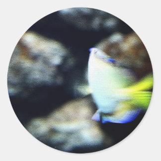 Pescados Etiqueta Redonda