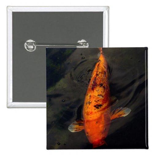 Pescados - pescados grandes poca charca pins