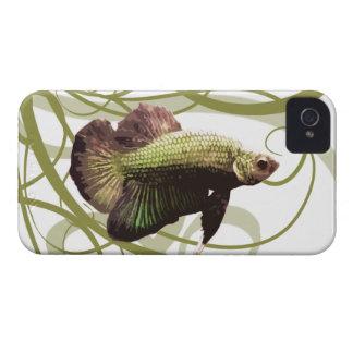 Pescados que luchan siameses de Betta del oro iPhone 4 Cobertura