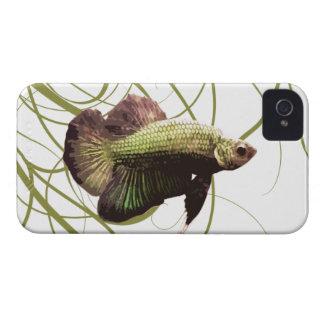 Pescados que luchan siameses de Betta del oro Case-Mate iPhone 4 Carcasas
