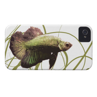 Pescados que luchan siameses de Betta del oro iPhone 4 Case-Mate Fundas