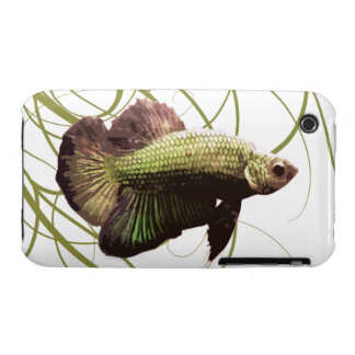 Pescados que luchan siameses de Betta del oro iPhone 3 Fundas