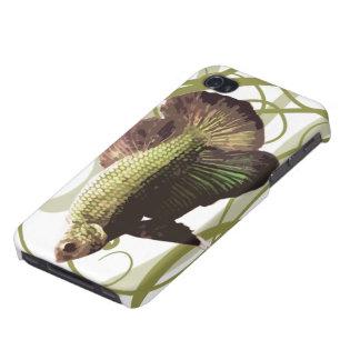 Pescados que luchan siameses de Betta del oro iPhone 4 Funda