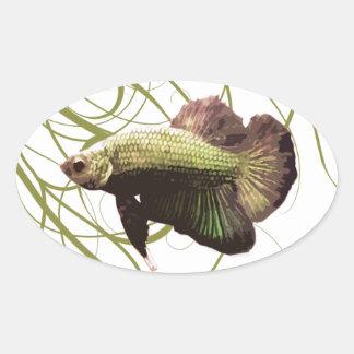 Pescados que luchan siameses de Betta del oro Calcomania De Óval Personalizadas