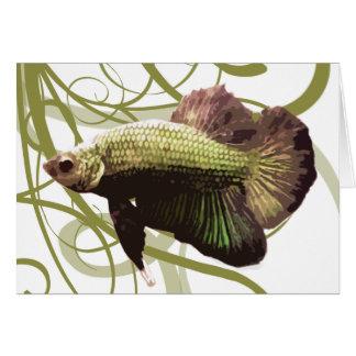 Pescados que luchan siameses de Betta del oro Felicitaciones