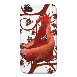 Pescados que luchan siameses rojos de Betta iPhone 4/4S Funda