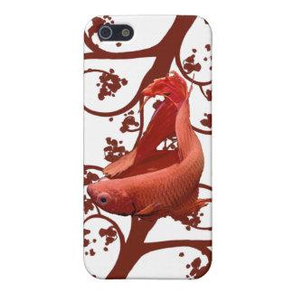 Pescados que luchan siameses rojos de Betta iPhone 5 Carcasa