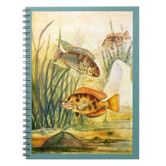 Pescados restaurados vintage libro de apuntes con espiral