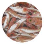 Pescados rojos con los ojos amarillos platos