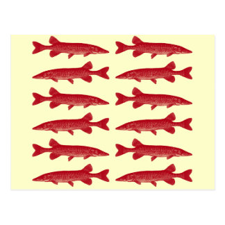 Pescados rojos de Muskie Tarjeta Postal