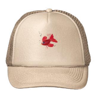 Pescados rojos imaginarios gorras de camionero