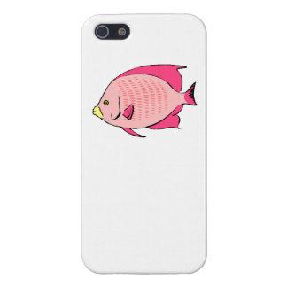 Pescados rosados del ángel iPhone 5 cárcasa