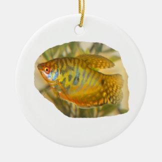 Pescados saturados de oro del acuario de la vista adorno navideño redondo de cerámica