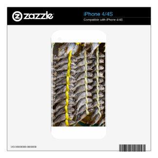 Pescados secados iPhone 4 calcomanías