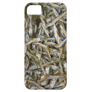 pescados secos funda para iPhone 5 barely there