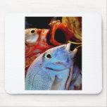 pescados tapete de ratones