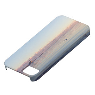Pescados temáticos, un vuelo del pájaro después de iPhone 5 carcasas
