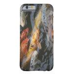 Pescados tímidos funda para iPhone 6 barely there