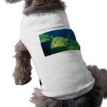 Pescados tropicales camisa de mascota