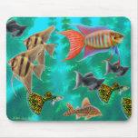 Pescados tropicales de agua dulce Mousepad
