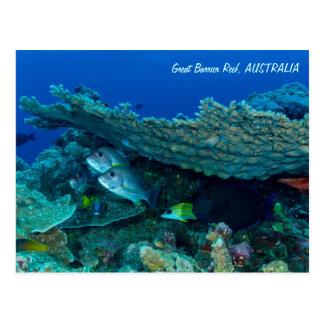 Pescados tropicales de la postal del mar de coral