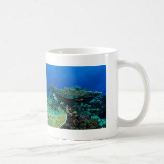 Pescados tropicales de la taza de café del mar de