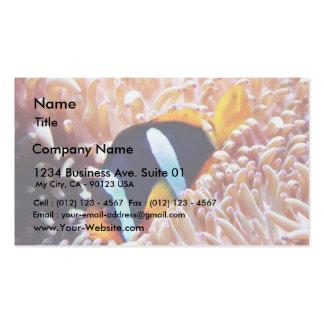 Pescados tropicales de los pescados del payaso tarjeta personal