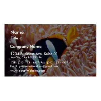 Pescados tropicales de los pescados del payaso plantilla de tarjeta de negocio