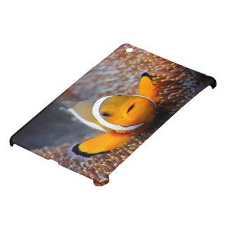 Pescados tropicales del filón - Clownfish