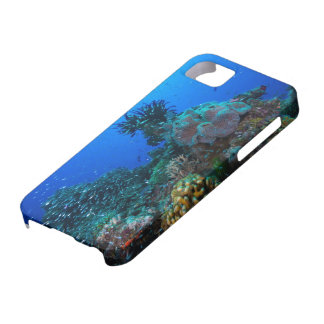 Pescados tropicales del mar de coral iPhone 5 Case-Mate cárcasa