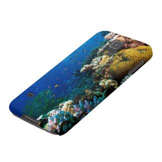 Pescados tropicales en la gran barrera de coral carcasas de galaxy s5
