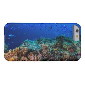 Pescados tropicales en la gran barrera de coral funda de iPhone 6 barely there
