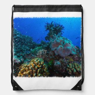 Pescados tropicales en la gran barrera de coral mochila