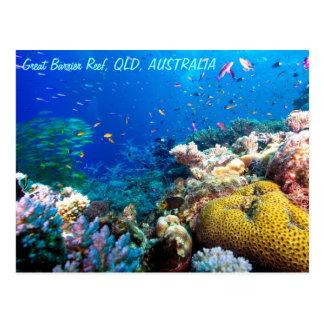 Pescados tropicales en la gran barrera de coral postal