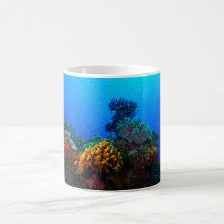 Pescados tropicales en la gran barrera de coral taza de café