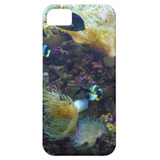 Pescados tropicales funda para iPhone 5 barely there