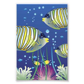 Pescados tropicales ilustrados impresión fotográfica