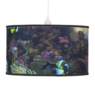 Pescados tropicales lámpara de techo
