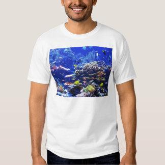 Pescados tropicales remeras