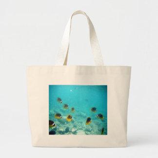 Pescados tropicales subacuáticos bolsas