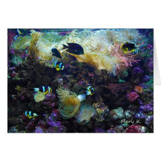Pescados tropicales tarjeta pequeña