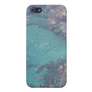 Pescados tropicales y caso coralino Cas de Iphone  iPhone 5 Fundas