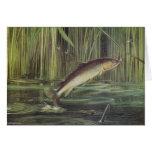 Pescados - trucha de Brown - trutta del Salmo Tarjeta De Felicitación