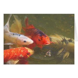Pescados v.1 de Koi Tarjeta De Felicitación