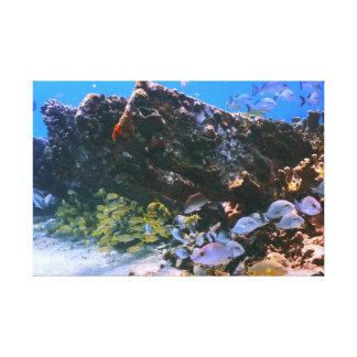 Pescados viejos del naufragio y del filón impresión en tela