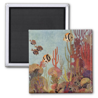 Pescados y coral tropicales del vintage en el océa iman