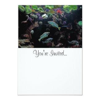 Pescados y foto acuática subacuática de la vida comunicados personales