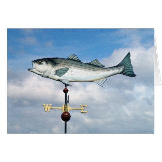 ¡Pescamos! Felicitacion