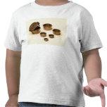 Pesos usados por los comerciantes y los boticarios camiseta
